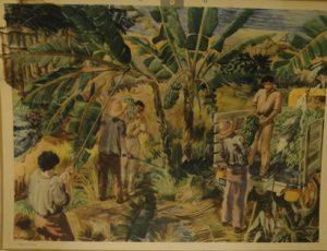 Kolonialvaror